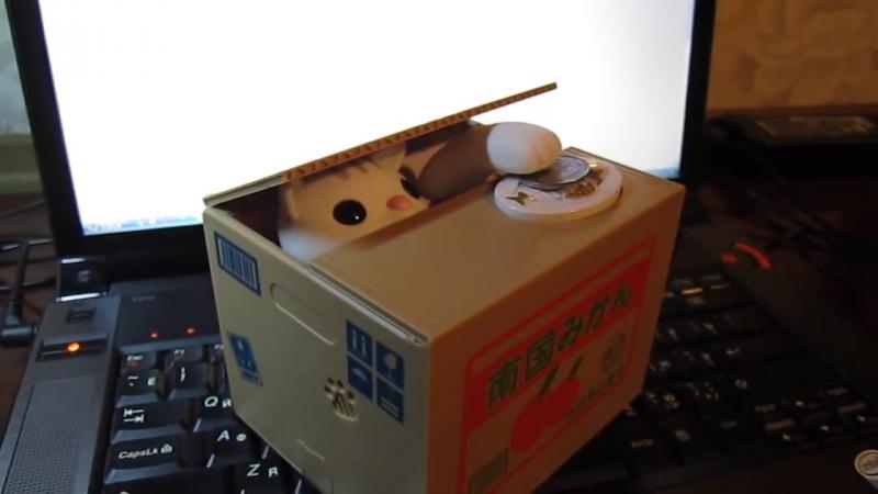 Скарбничка Кіт в коробці