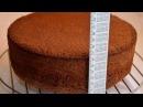 ✧ БИСКВИТ МЕДОВЫЙ ✧ Biscuit Honey Dough ✧ Марьяна