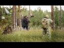 Охота на лося. Видео подборка реальных охотничьих моментов.
