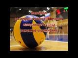 Волейбол последовательность обучения нападающего удара( основные упражнения))