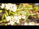 Весна в Душе. Цитаты из книги Анастасии Новых «АллатРа»