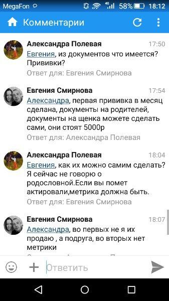 Девушка выставила объявление о продаже щенков джек расселов аж за целы