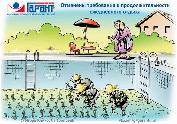 Фото №456239298 со страницы Ираиды Боровинских