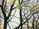 Эльмира Жерздева - Осень золотая (муз. Григория Пономаренко - ст. Маргариты Агашиной)