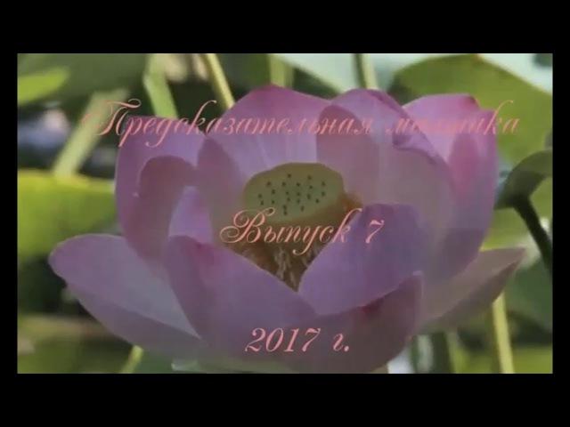 Предсказательная мантика. Выпуск №7 - Расклад Лотос (малый психологический пор ...
