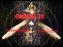 Okkulte Freimaurer Numerologie | Analyse Vorkommen in Firmen Logos und Gesellschaft