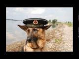 ОСНАЗ ВМФ ГРУ СССР