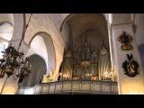 Organ music at the Dome Cathedral Tallinn (Органная музыка в Домском соборе Таллинн)