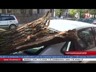 Переправа закрыта, ЛЭП оборваны, на автомобили обрушились деревья - в Крыму разыгралась стихия Стихия разыгралась по всему Крыму