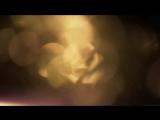 ФУТАЖ Золотистое боке, блики - FOOTAGE Bokeh
