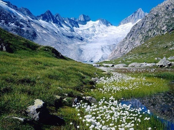 Швейцария любимая моя