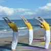 Каникулы Шивананда йоги на берегуФинского залива