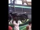 Цирк отдыхает! Индус на голове затащил мотоцикл по лестнице