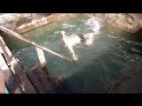 Купель, восстановленная Янтарными моржами, после сожжения вандалами старой, пос. Малиновка.