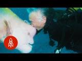 Aquatic Affection How a Scuba Diver Found a Good Friend Under the Sea