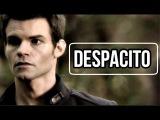 ► Elijah Mikaelson _ Despacito