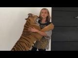 Tiger Attack  Cara Delevingne  Cute