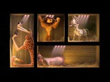 Madagascar - Box Transfer 720p HD