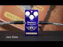 Mad Professor BlueBerry Bass Overdrive video by Heikki Laine