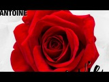 DJ Antoine - La Vie En Rose (DJ Antoine vs Mad Mark 2k17 Mix) - Official Audio