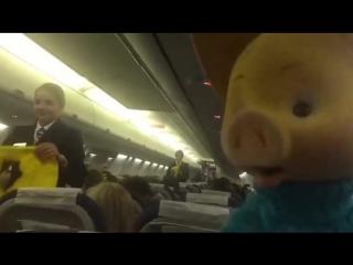 Хрюша смущает стюардесс в самолете