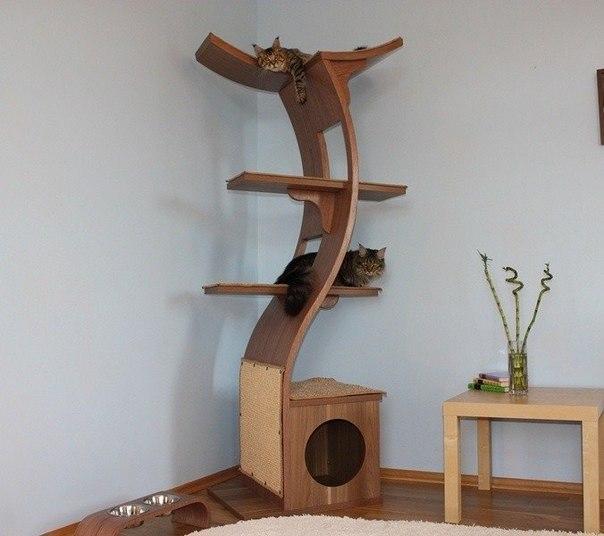 Игровые площадки для кошек