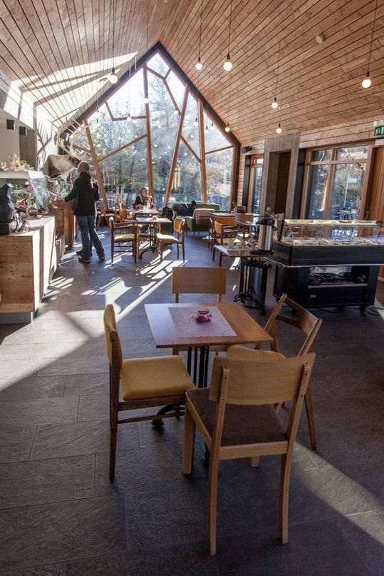 Kollgata Arkitektur представило Кафе в Ботанических садах,