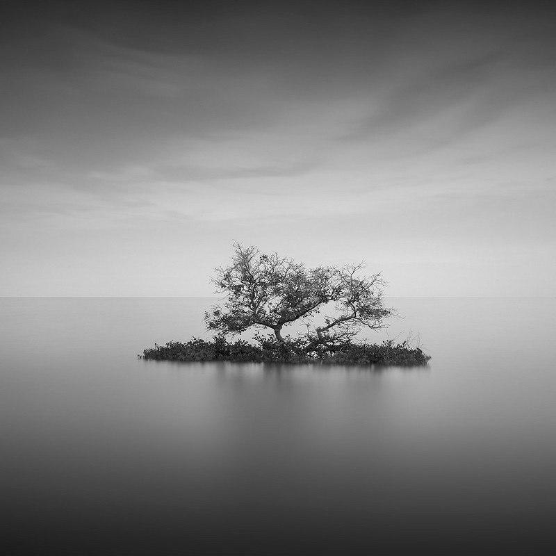 Величественная дихромия в фотографиях Daniel Tjongari