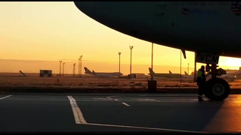 Пять самолетов Cargolux в аэропорту Толмачево
