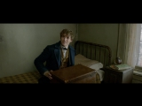 RUS | Отрывок из фильма «Фантастические Твари» эксклюзивно для ВК!
