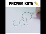 Нарисуем котика.