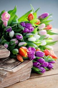 Оптом цветы в нижнем новгороде
