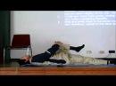 Tao Yin Yoga FREE Course, Grand Master Mantak Chia in Germany