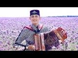 Разил Камалов - Татар Халык К
