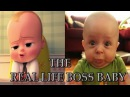 THE BOSS BABY | Teaser Trailer ( 2017 ) The Real Life Boss Baby