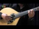 Fado instrumental - Sandro Costa Luis Guimarães (Variações em re)