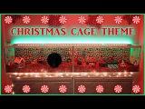 Carob's CHRISTMAS Hamster Cage Theme  2016