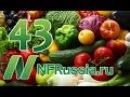 №43 Рейтинг овощей-борцов с раком. Доктор Майкл Грегер, русская озвучка
