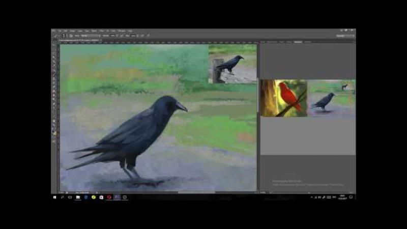 Speedpaint Calist Corvus corax