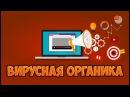 Вирусная органика. Секреты продвижения видео в Youtube.