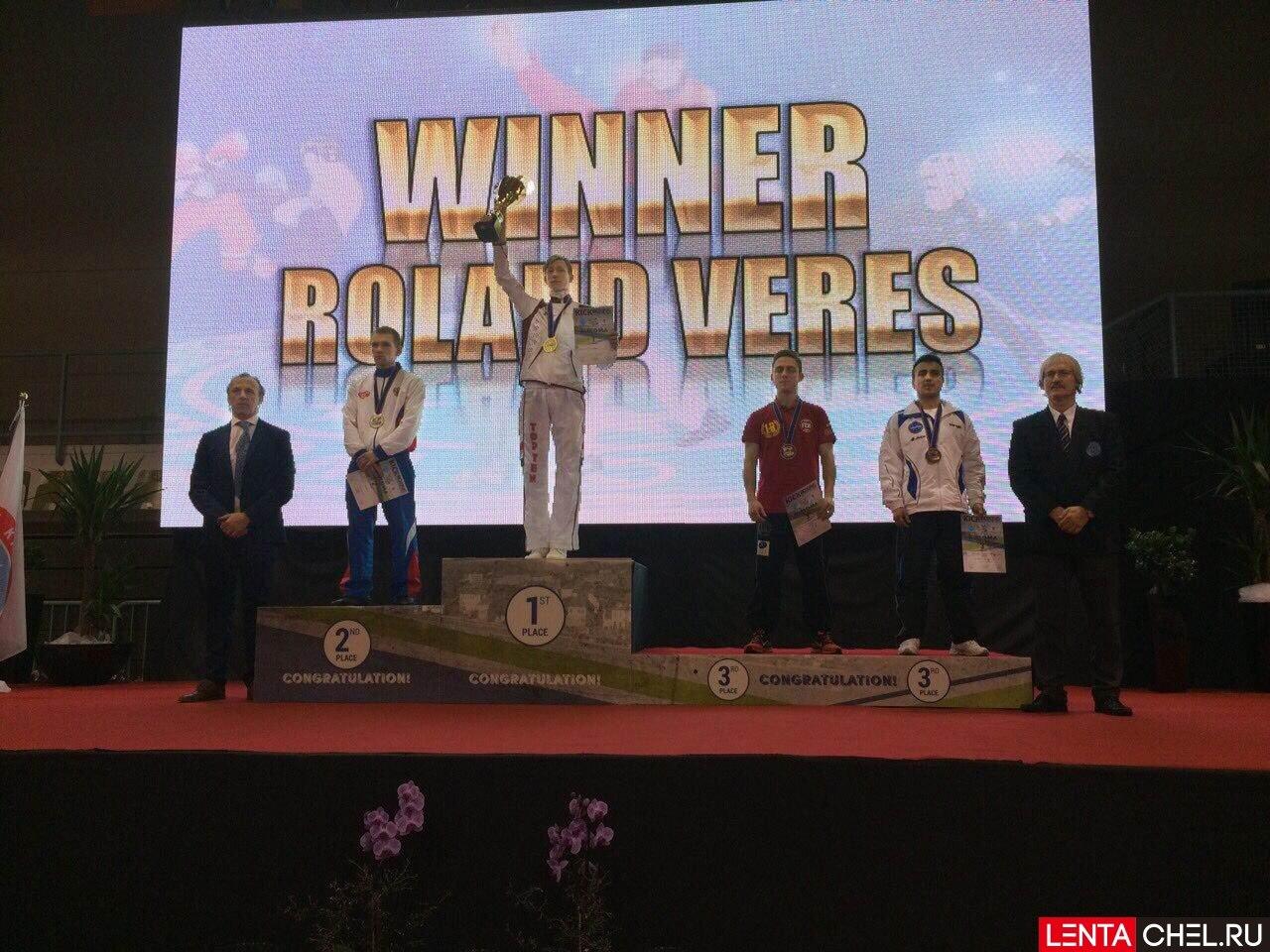 Чемпионат Европы по кикбоксингу