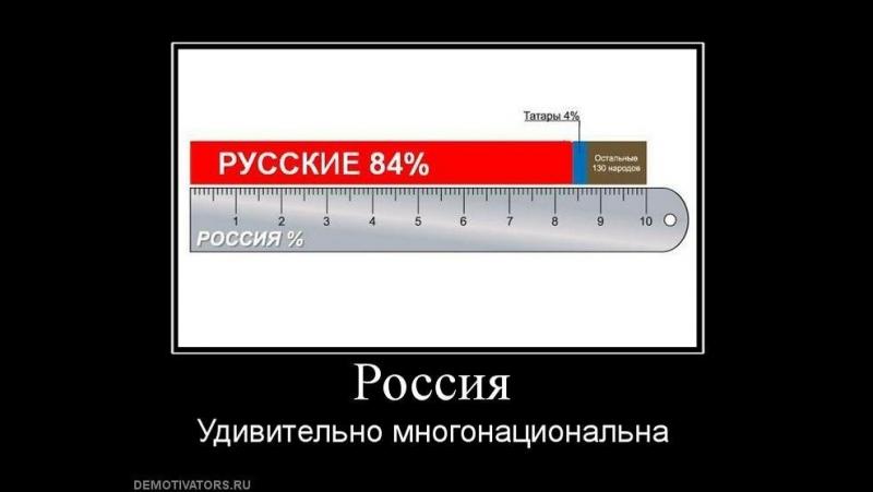 Россия - МОНОнациональное РУССКОЕ государство (Е.Логинов).(А не многонациональная, как нам втирают СМИ).