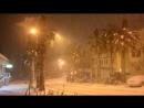 Пальмы в снегу._