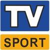 Спортивные онлайн трансляции