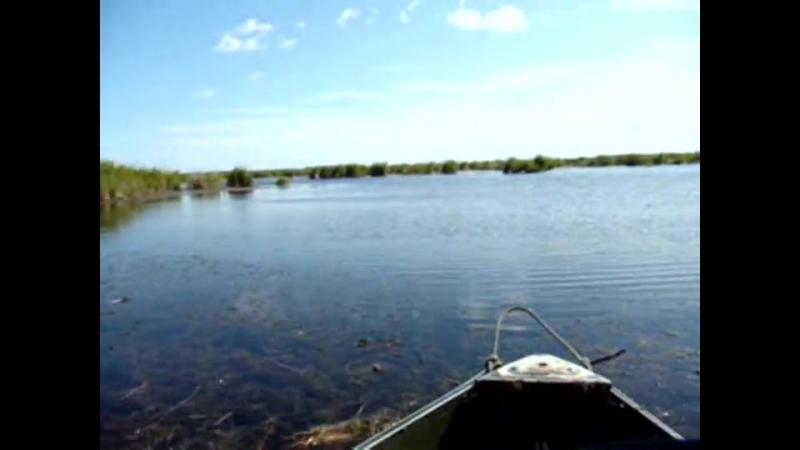 04.Озеро Беляниха 2009. День 3-й
