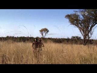 BBC. Путешествие человека - За пределами Африки (1 серия из 5) HD 720