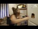 9-летняя девочка вундеркинд бокса (221 удар за 30 секунд)