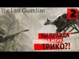 Враг моего врага ● Last Guardian 2 [PS4Pro]