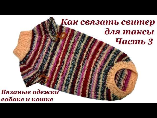 Как связать свитер для таксы. Часть 3