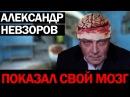 Сколько стоит ложь Александра Невзорова?
